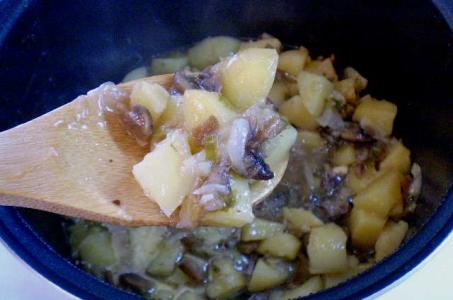 Прекрасный вариант приготовления картошки с грибами в сметане в мультиварке