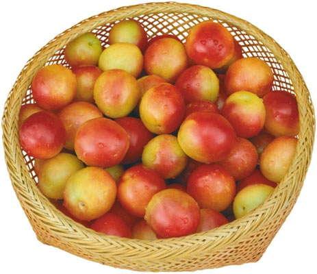 собрать плоды