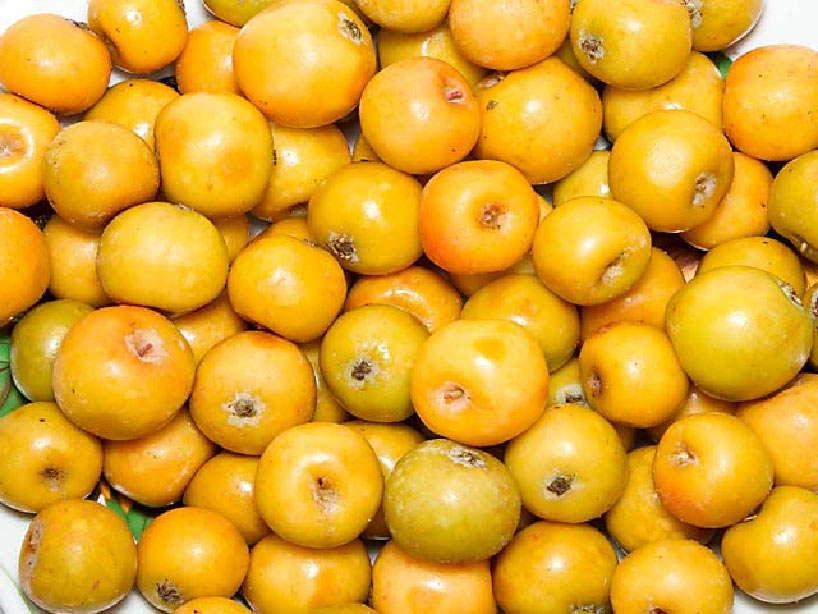 хорошенько помыть плоды